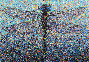 Painting: Dragonfly. Artist: Michael Glass